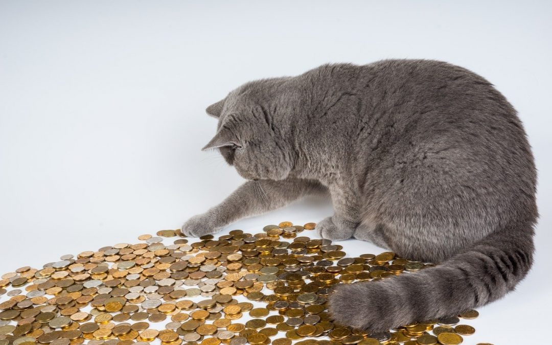 Niezwłoczny zwrot środków – obowiązek banku